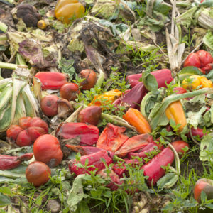 climate control in fruit and vegetable